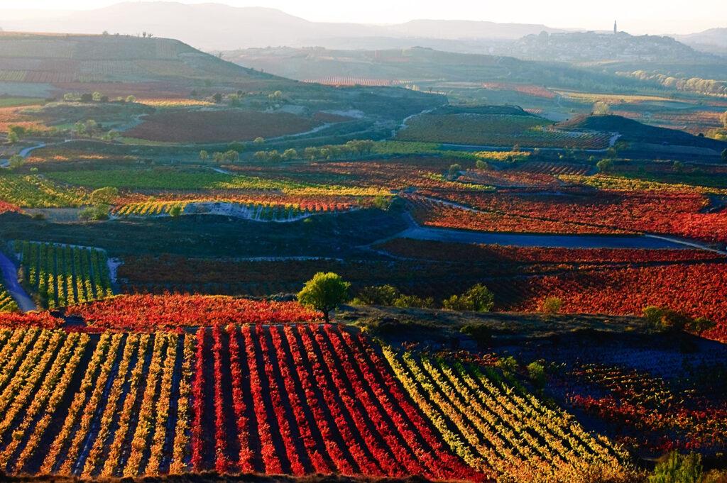 shutterstock 1463082647 1024x681 - Esta segunda pascua te mereces La Rioja